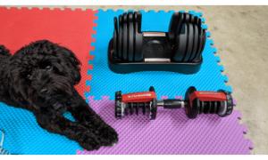 C:\Users\scott\Google Drive\Writing\website\WeightEquipmentGuru.com\blog content\Bowflex 552 Adjustable Weight Review